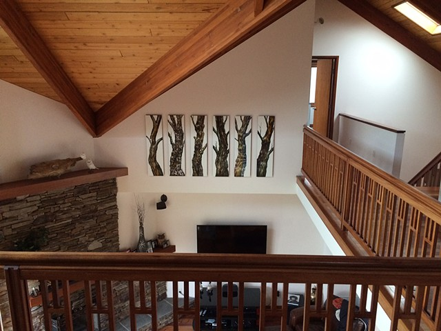 Scratchboard trees in a clients home