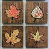 Small Leaf Paintings