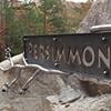 Persimmon Hill