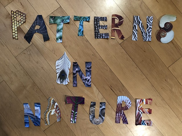 Patterns In Nature For Kids