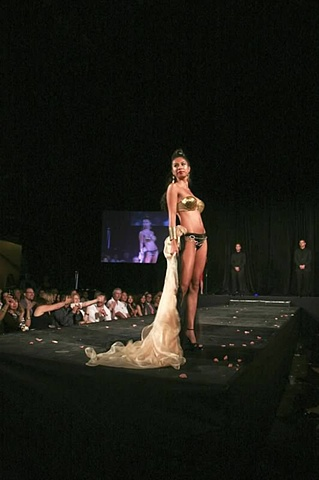 Art bra Austin 24k gold mosaic runway show model Austin music hall