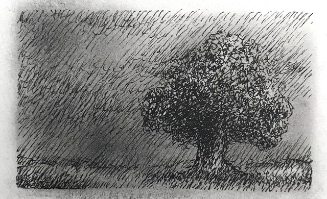 Single Tree Drawing In Field