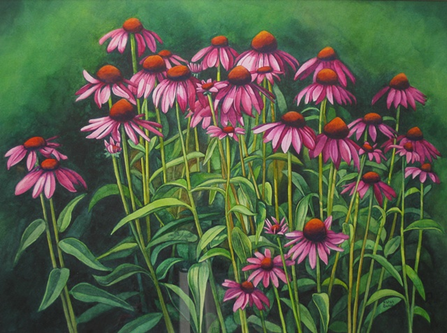 Coneflowers-Framed