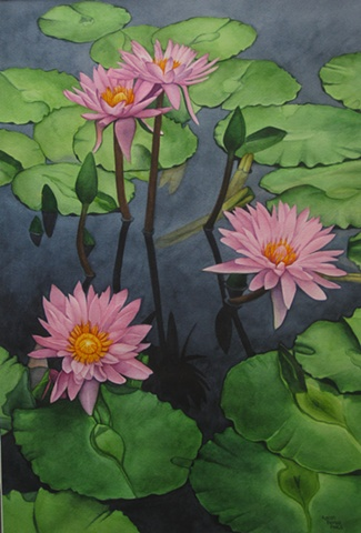 Waterlilies Pink-Framed