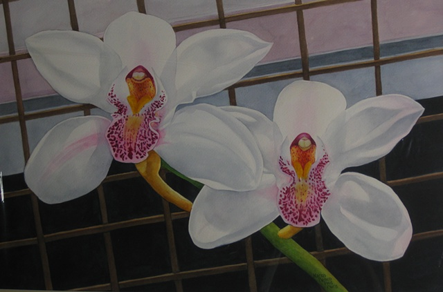Orchids White on Fence-Unframed