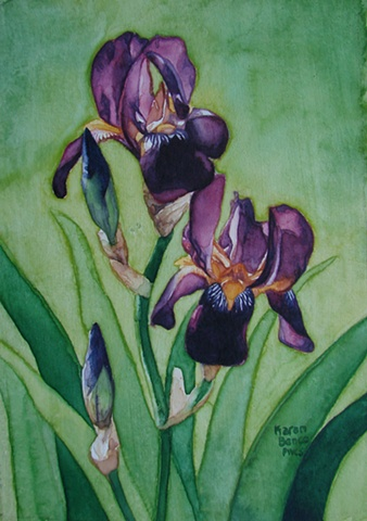Irises Light & Dark Purple1-Framed