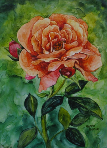 Rose Peach Other-Unframed