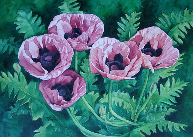 Poppies Pink Coral-Framed