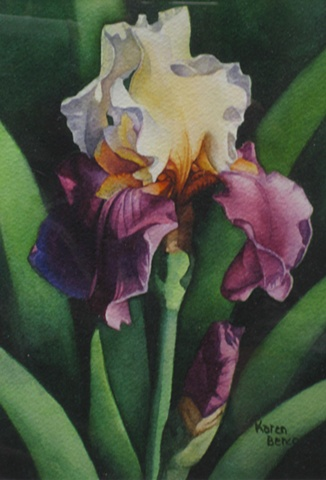 Irises White Purple-Framed