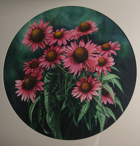 Coneflowers Circle-Unframed