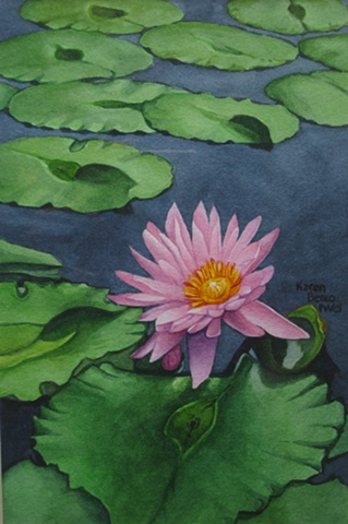 Waterlilies Pink2 - Framed