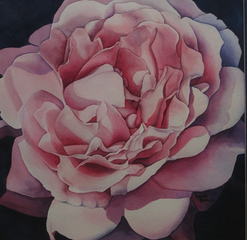 Rose Pink1-Unframed