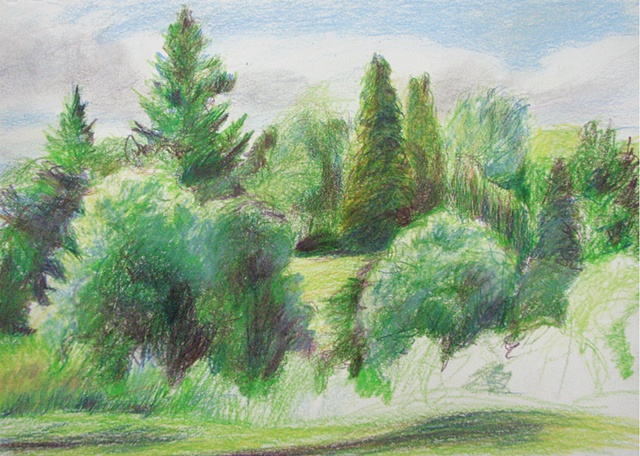 drawing of tree-filled park in Portland OR by Chris Mona