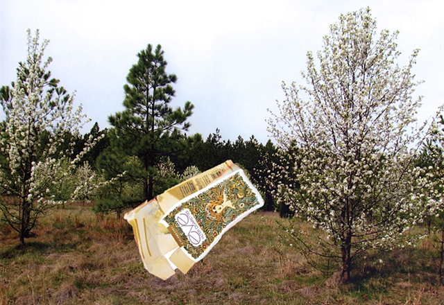 digital print and collage of a spring landscape with flowering pear trees and pine trees as a visionary experience with spilling Eve cigarette package by Chris Mona