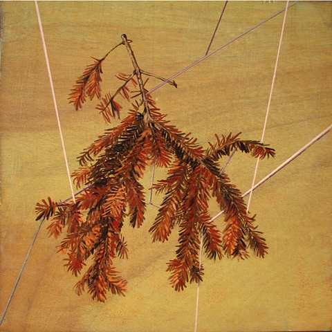 painting on wood panel of a dead spruce branch wrapped in string by Chris Mona