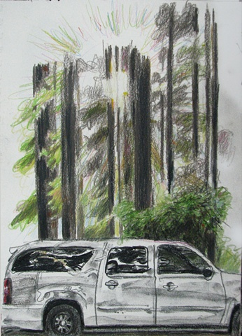 drawing of redwoods with sun rays and Denali SUV by Chris Mona