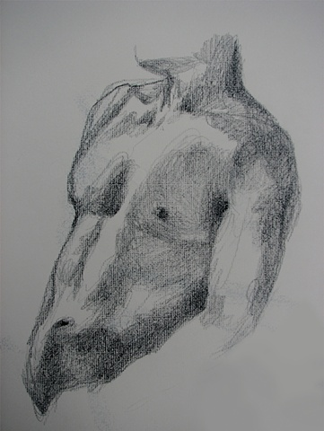 drawing of male torso by Chris Mona