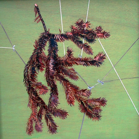painting of a dead spruce branch wrapped in string by Chris Mona