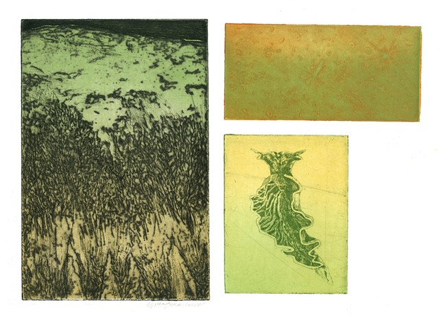 Brigitte Caramanna, planet, sky, gallaxies, slug, space, specimens, intaglio printmaking by brigitte caramanna