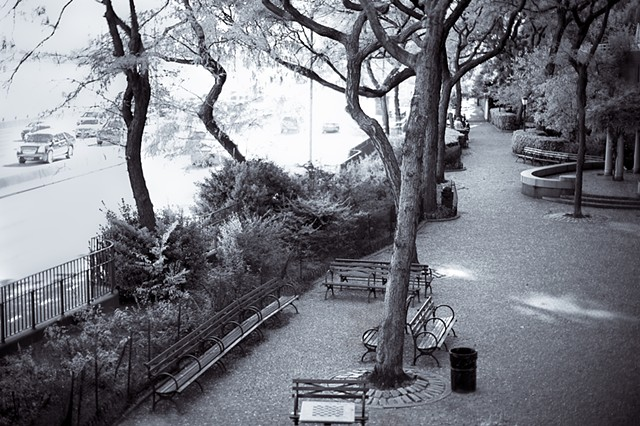 Photograph of Peter Detmold Park and FDR Drive, Manhattan, NY, by Judith Ebenstein