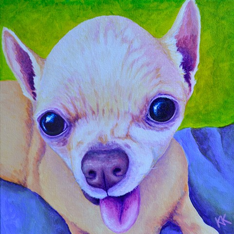 """Sweet, old lady Chihuahua"""