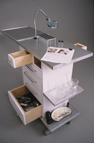 Systematic Inquiry Cabinet