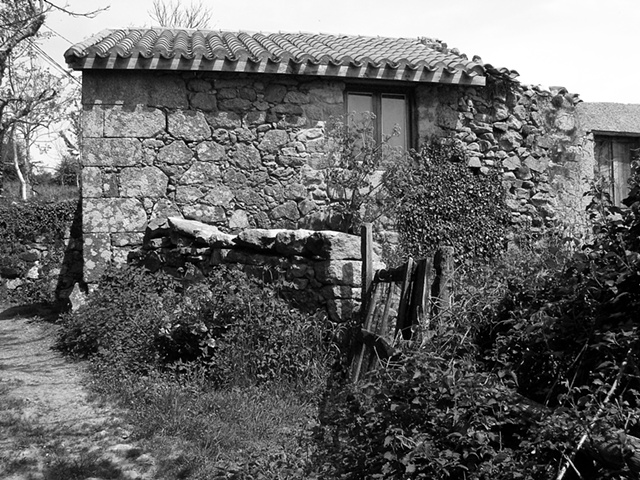 """Remains of a House with Weeds""  Another beautiful old house in a village called O Mato, in Galicia"