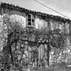 """House with Grape Arbor""  Vineyards are an essential part of Galician life. Some people have vines in front of their houses or wherever there is room."