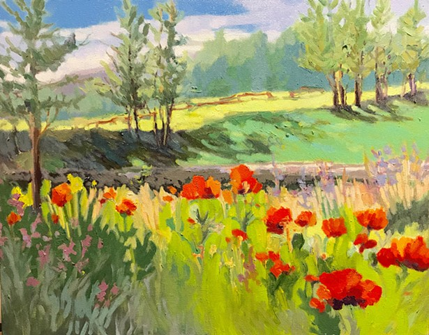 Summer Montana Poppies
