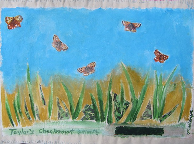 """Taylor's Checkerspot Butterflies""or nature doormat"