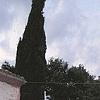 Abruzzo Diptych #2