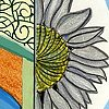 Abruzzo #9: Sunflower
