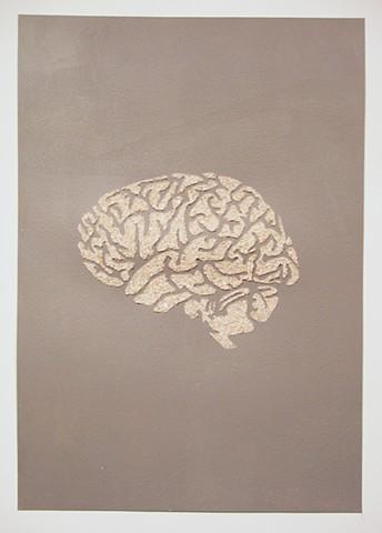 Eggshell Brain