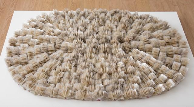 Spring Again (dandelion rug)