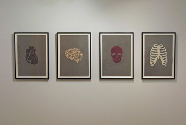install shot of body drawings