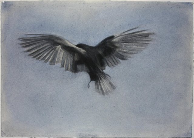 Wings II (small)