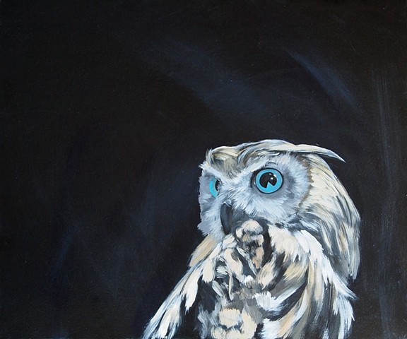 owl dark stunning eye gaze pie douglas kleinsmith keliiheleua modern contemporary animal abstract painting acrylic canvas auburn sacramento artist