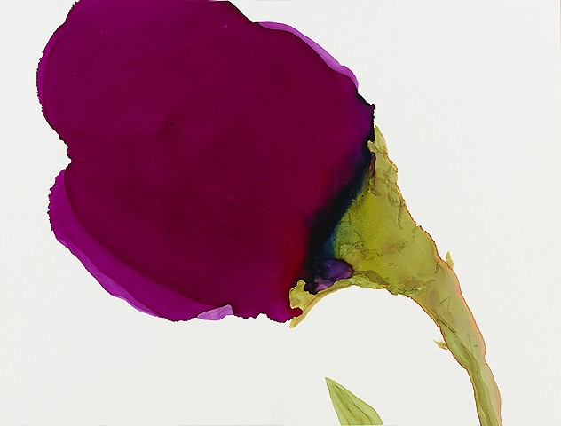 Contemporary art, abstraction, floral, botanical, roses.