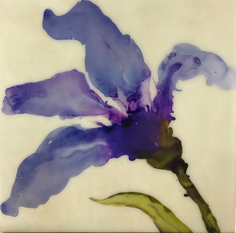 Contemporary art, abstraction, floral, botanical, iris.