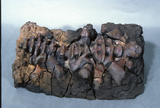 raku fired ceramic clay sculpture skeletal skeleton fossil osteal bone bonelike