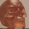Rhubarb Skull