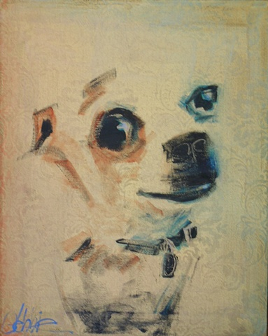 PET PORTRAITS FOR PET CHARITIES