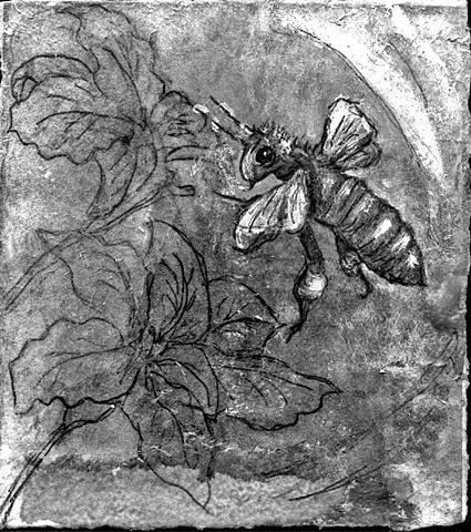 bee flowers hives honey