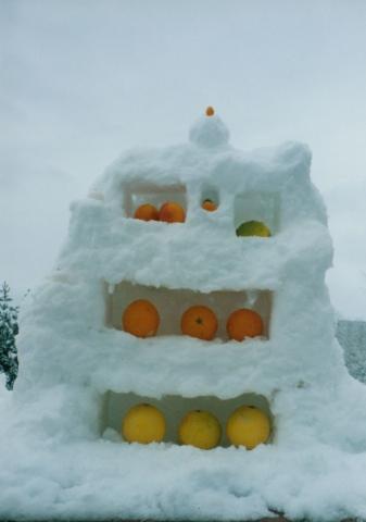 Snow Citrus Cabinet
