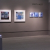 Shows and Exhibitions