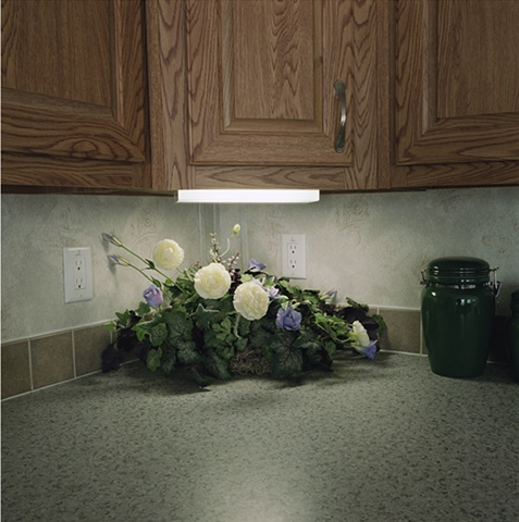 Plastic flowers on kitchen counter, manufactured display home, © Amy Eckert www.amyeckertphoto.com