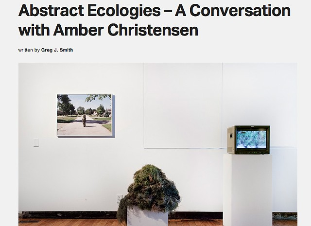 Abstract Ecologies