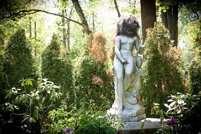 Musidora - An Intervention in Guildwood Park
