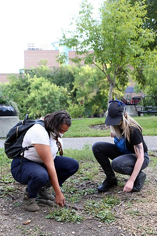 Plant Walks with Latifa Pelletier-Ahmed