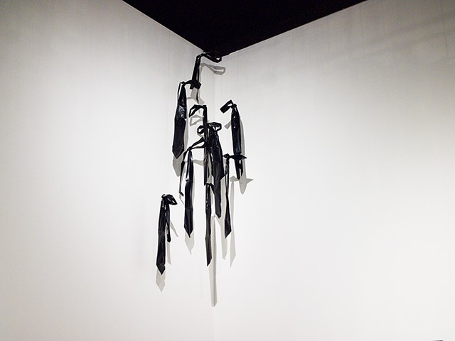 Neckties, Installation View, Latitude 53